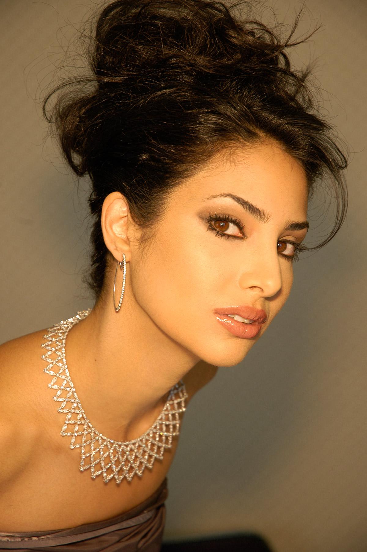 PERSIAN SECRETS, Ramona Amiri
